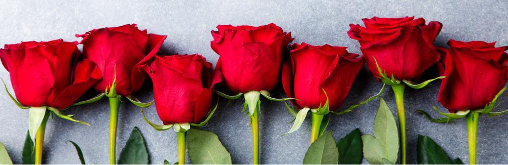 geboortemaand juni rozen