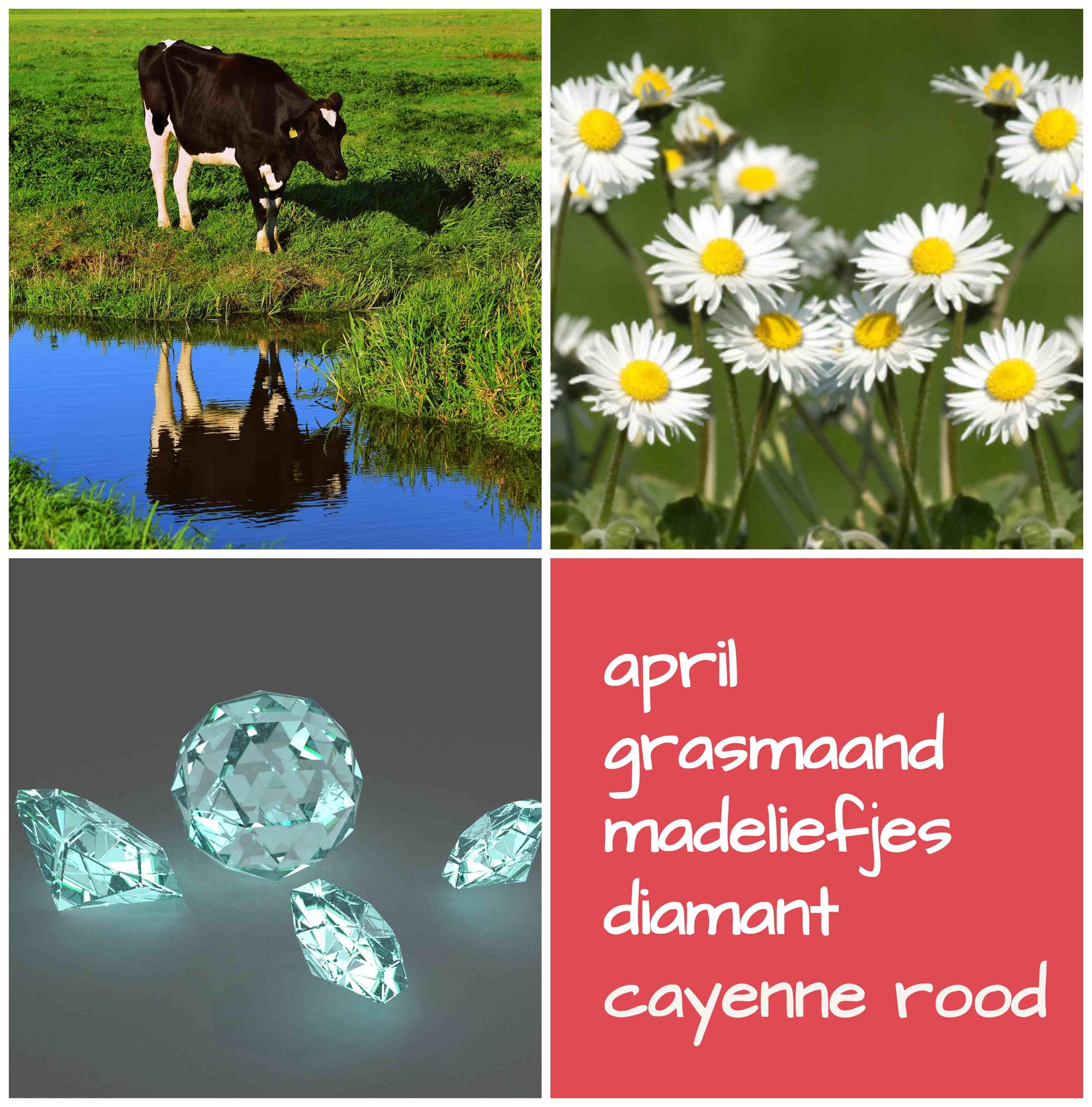 verjaardag april grasmaand geboortebloem geboortesteen geboortekleur