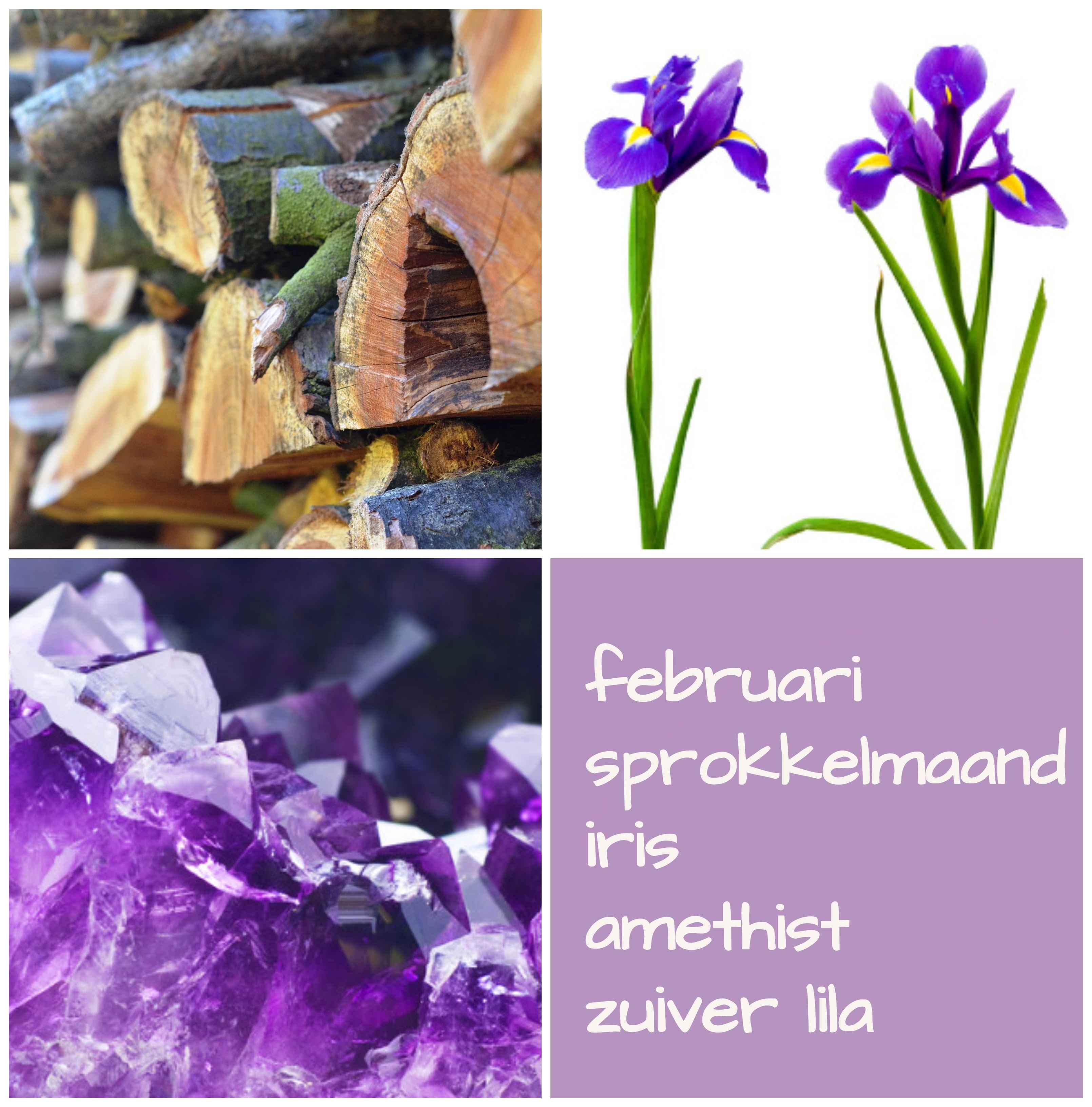 verjaardag februari sprokkelmaand geboortebloem geboortesteen geboortekleur